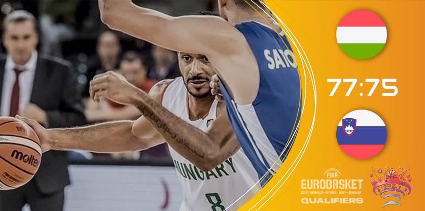 Magyarország - Szlovénia: kosárlabda Európa-bajnokság selejtező